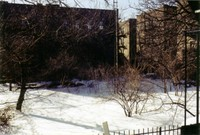 There were two empty lots behind our building, kind of like a backyard. Snow, early 2004.