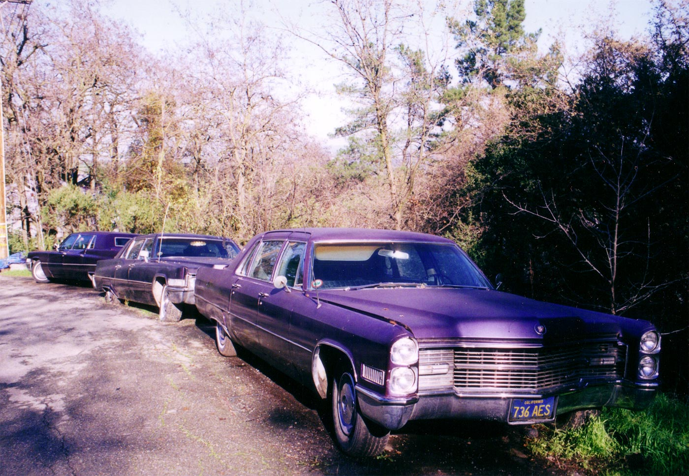 Purple Cadillac limo graveyard.