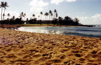 Some other perfect beach in paradise.