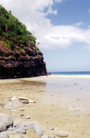 I stopped at this beach with Norm and Aaron in the middle of our day-long hike to a waterfall.