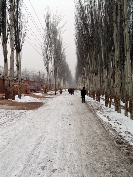 Snowy street in Kasghar near the livestock market.
