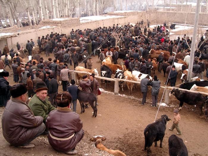 Upal's lively livestock market.
