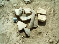 Shards of pottery that we managed to collect over just a few minutes. Gaochang is literally littered with the stuff.