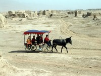 Another donkey taxi goes cruising on by, filled with Uyghur children.