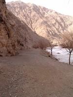 Gazing down the Silk Road.