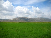 Nice valley, eh? Blue skies, puffy white clouds, green fields, yellow sunflowers.