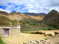 A perfect pastoral setting somewhere near the Yongla Pass on the way to Gyantse.