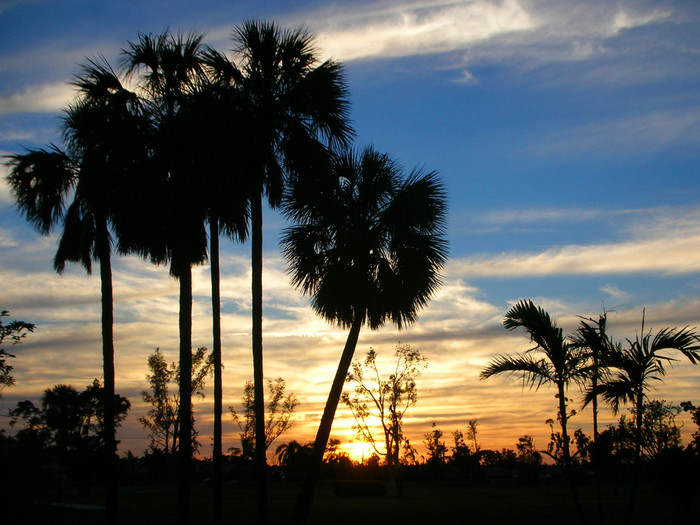 Another postcard Florida sunset.
