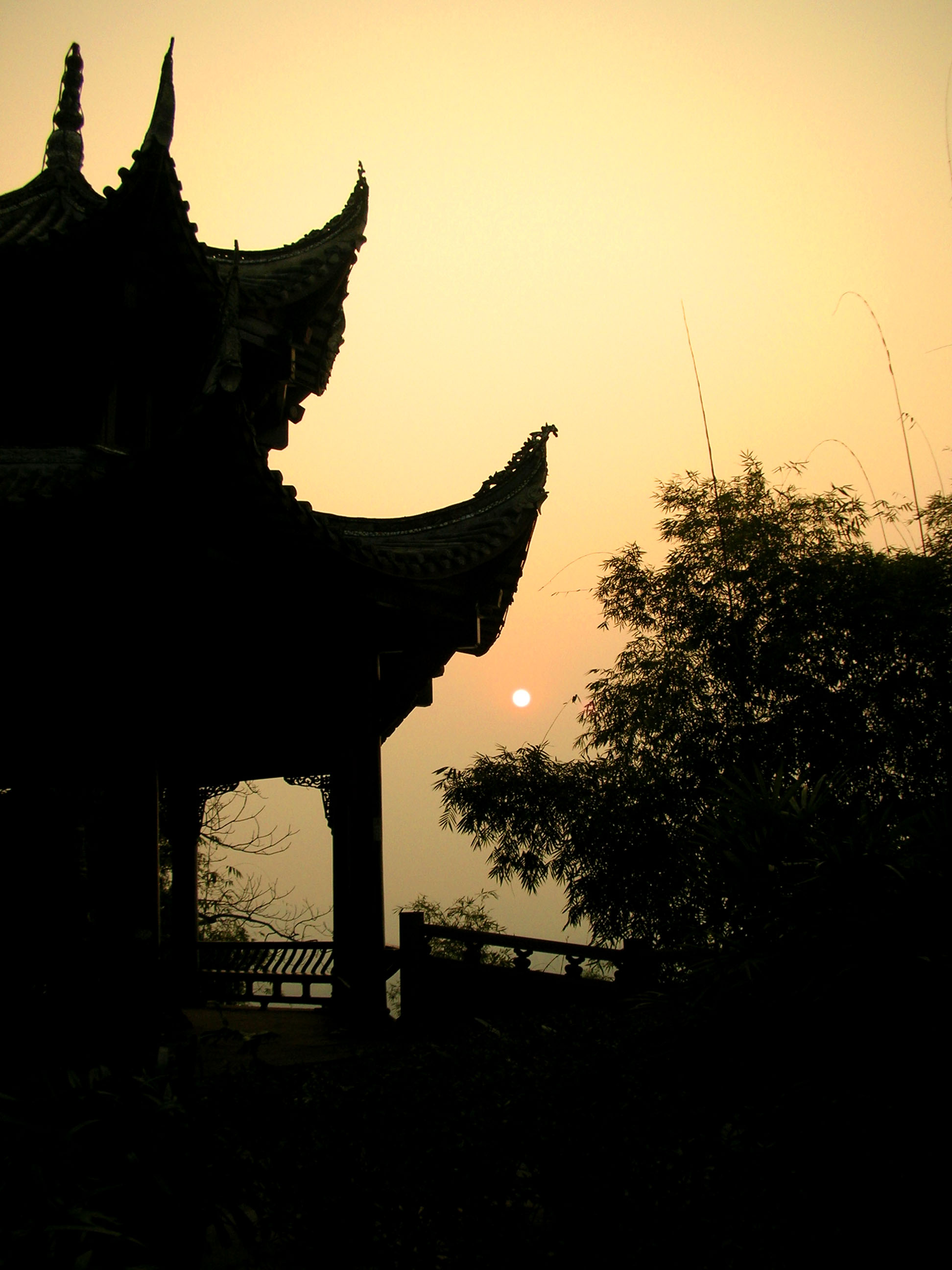 The sun setting behind a pagoda and some bamboo above the Giant Buddha's head.