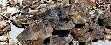 121 skulls found in Gansu Province... where did they come from?