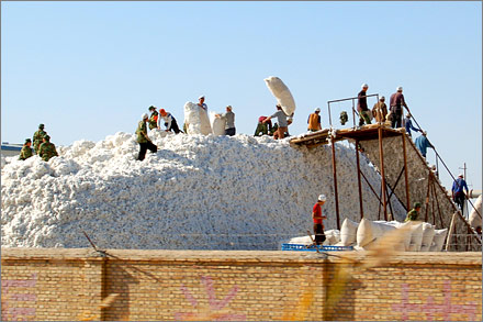 A huge pile of cotton at a collection station in Xinjiang.